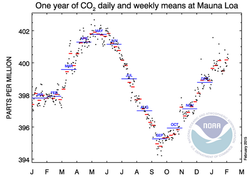 Mauna Loa CO2 levels Jan 2014-Jan 2015