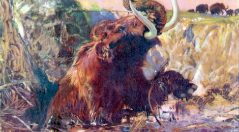 mammoth in tar pit