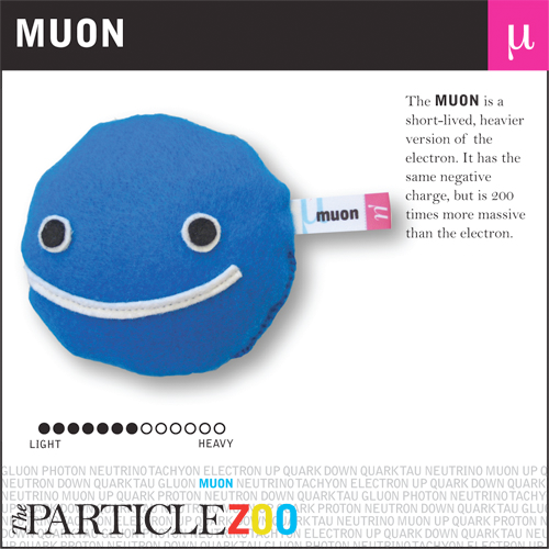 muon_from_particle_zoo